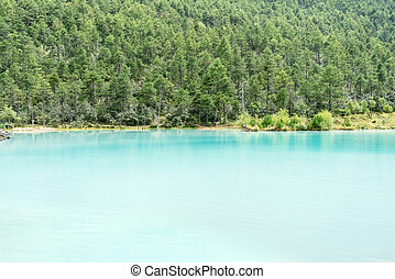 blue lake and green forest