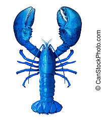 Blue Lobster Isolated