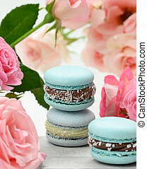 blue macarons lie on a background of pink roses