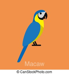 Blue Macaw, bird seriers