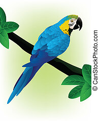 Blue Macaw - Vector Illustration Of Blue Macaw