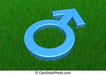 Blue Male Symbol on Grass