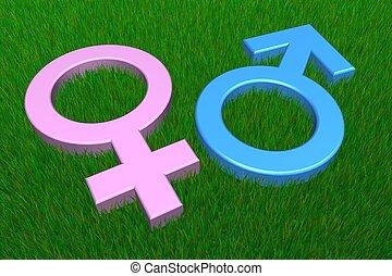 Blue Male/Pink Female Symbols on Grass