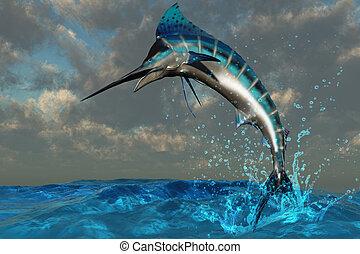Blue Marlin Splash - A spectacular Blue Marlin flashes its...