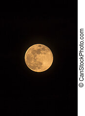 Blue Moon Rising Photo Dimensions Portrait