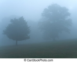 Blue Morning Mist - This is a misty early morning shot taken...