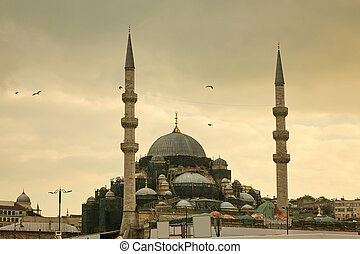 Blue mosque in Istanbul Turkey - architecture religion