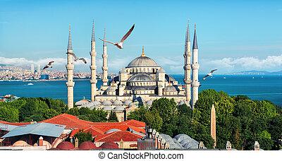 Blue Mosque in Turkey