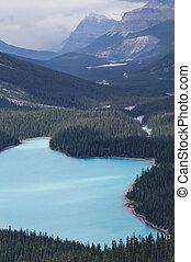Blue mountain lake with trees