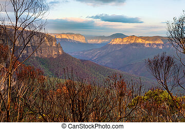 Blue Mountains escarpment and valley after a bush fire - ...