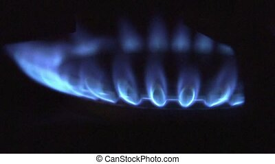 Blue natural gas fire flame - Natural gas flame from kitchen...