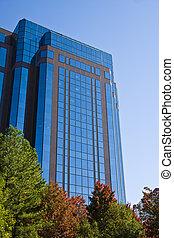 Blue Office in Fall
