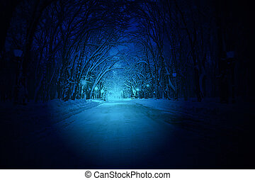 blue park road with power night illumination, winter alley...