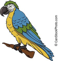 Blue parrot cartoon