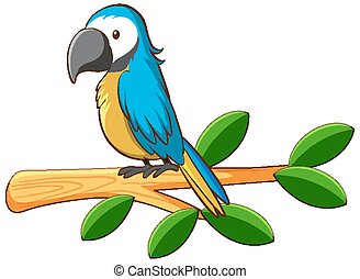 Blue parrot on the branch