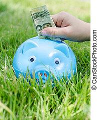 Blue piggy bank sitting on grass with hand putting Thai money.