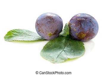 Blue plums.