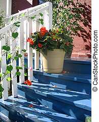 A pot of red flowers on the blue steps of a front porch