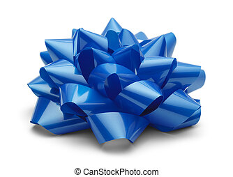 Blue Present Bow