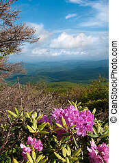 Blue Ridge Mountains - Beautiful view from the Blue Ridge ...