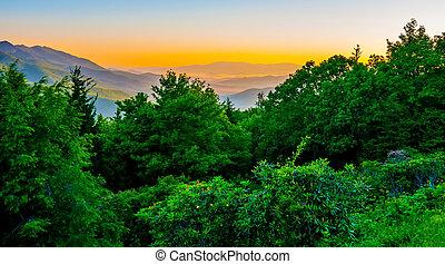 blue ridge parkway early morning