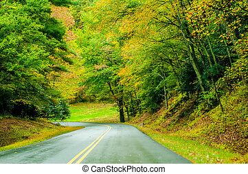 Blue Ridge Parkway in the Fall after a Rain