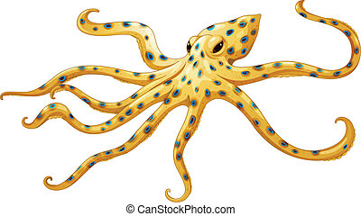 Blue-ringed octopus - Illustration of a blue-ringed octopus...
