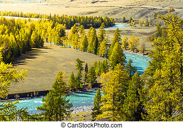Blue river in the autumn forest on a Sunny day. Autumn day trip in the mountains.