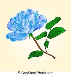 Blue  rose stem vector.eps