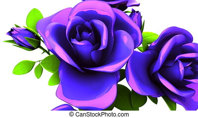 Blue Roses Bouquet On White Background