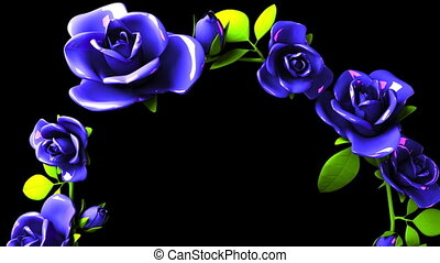 Blue roses frame on black text space