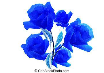 Blue roses on white isolated background