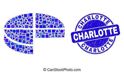Blue Scratched Charlotte Seal and Pie Chart Mosaic