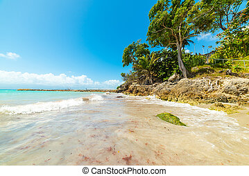 Blue sea in La Datcha beach