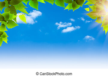 Blue skies. Abstract natural backgrounds for your design