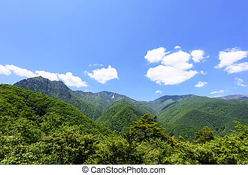 Blue sky and fresh green in Japan