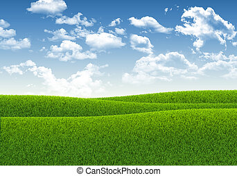 Blue sky and green grass. The natural background