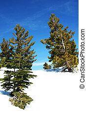 Blue sky and snow