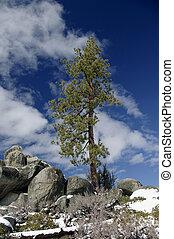Blue Sky And Snow - lake Tahoe, California