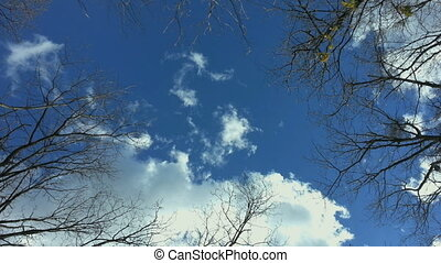 Blue Sky Below - Blue Sky directly from Below