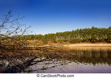 Blue sky, trees reflected in lake. Tranquil landscape