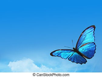 Blue sky with bright butterfly