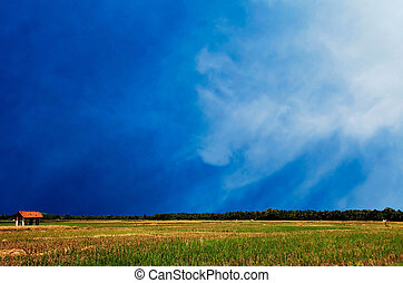 Blue sky with clouds above the green field