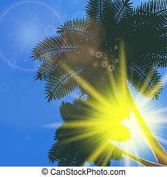Blue sky with summer sun burst background.
