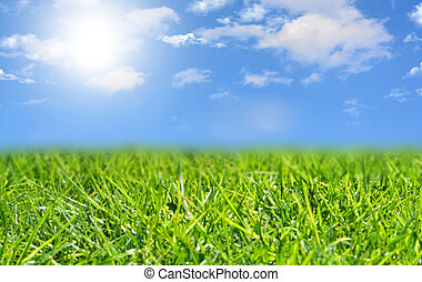 Blue sky with white clouds and green grass background on a summer day