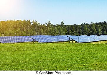 Blue solar panels in the field. Renewable energy.