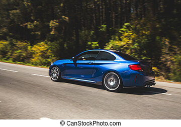 Blue sport coupe on the forest road