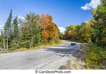Winding Road in Autumn Lined with Fall Colour - Ontario, Canada