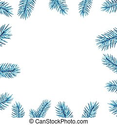 Blue spruce branches square frame.
