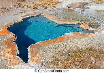 Blue Star Spring In Yellowstone